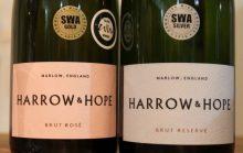 Marlow Vineyard 28