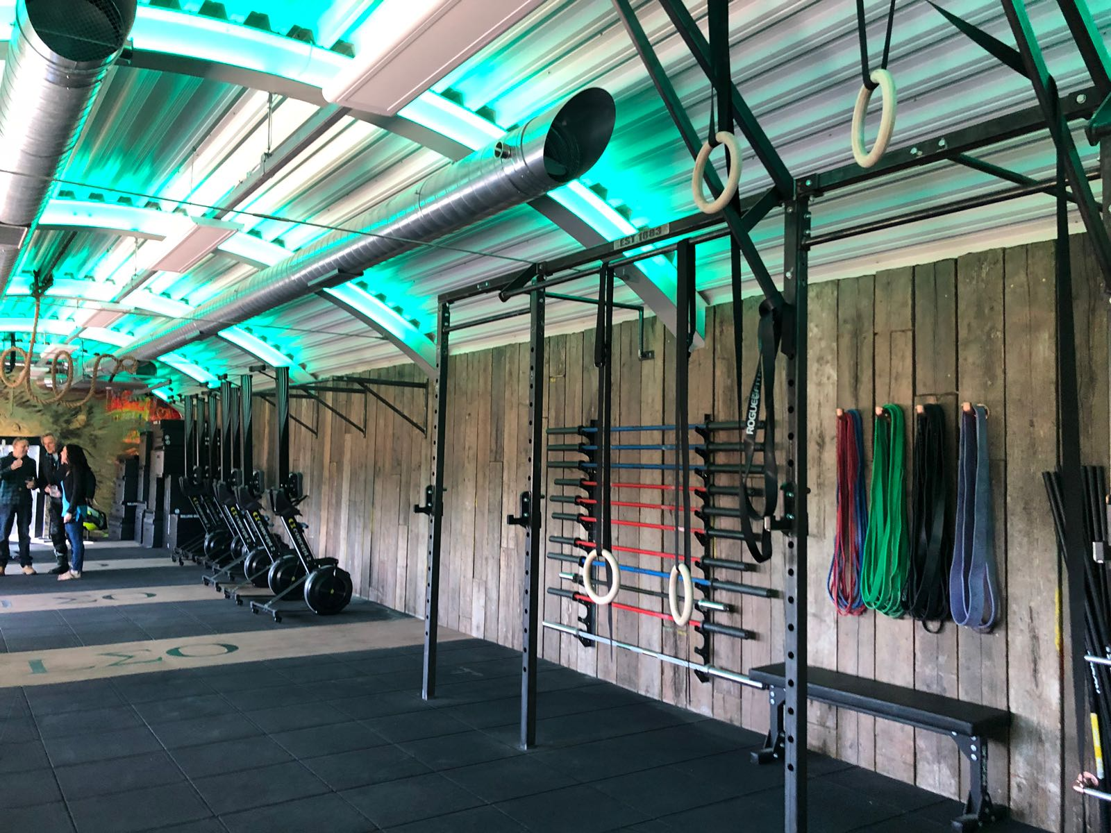 Leo gym Marlow