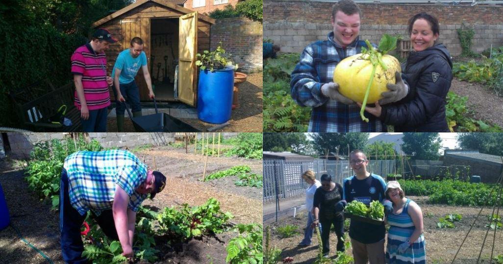 marlow-rotary-gardening-club